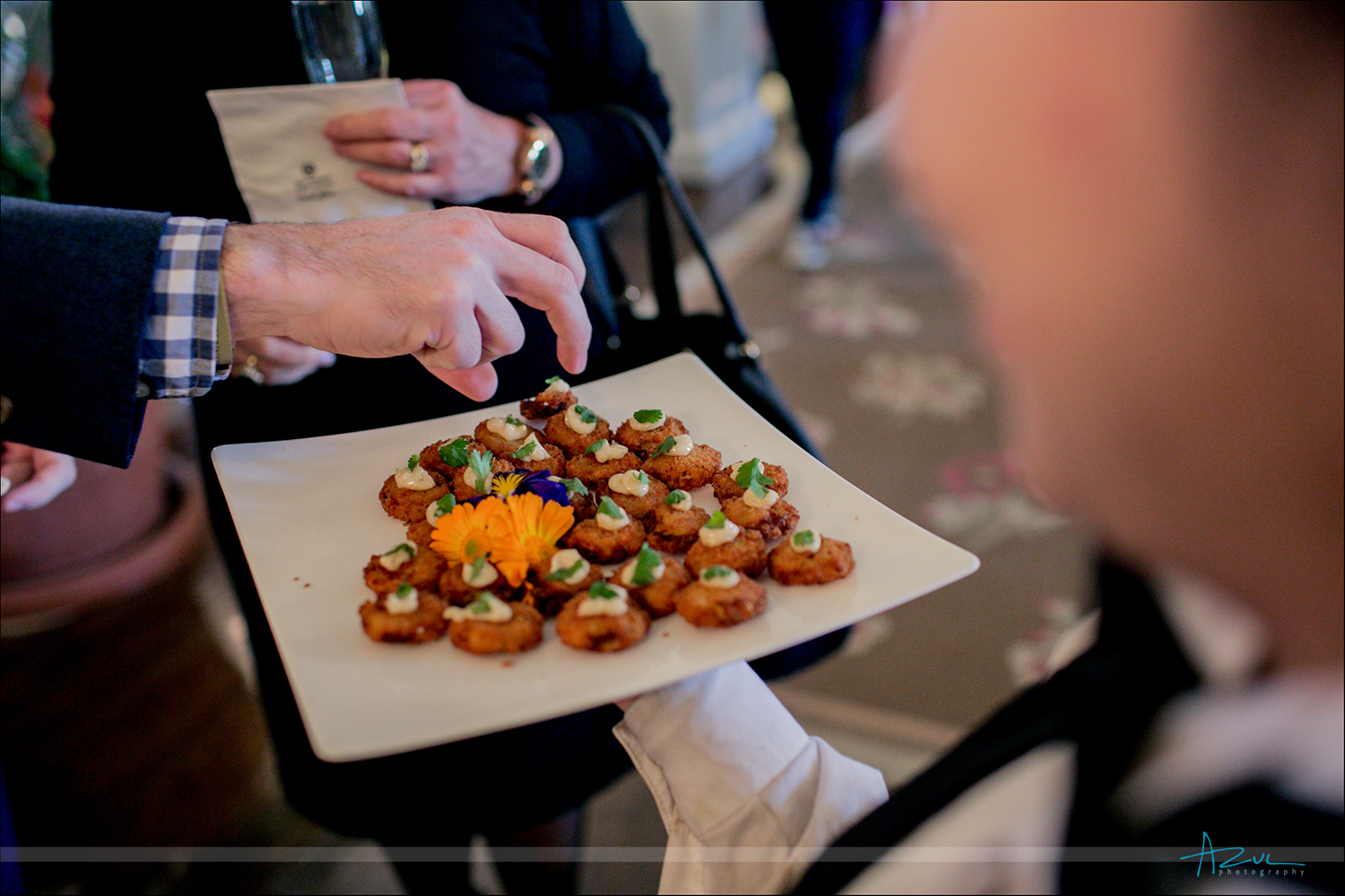 Wedding day appetizers for southerners in Ralegh, NC fried green tomatoes