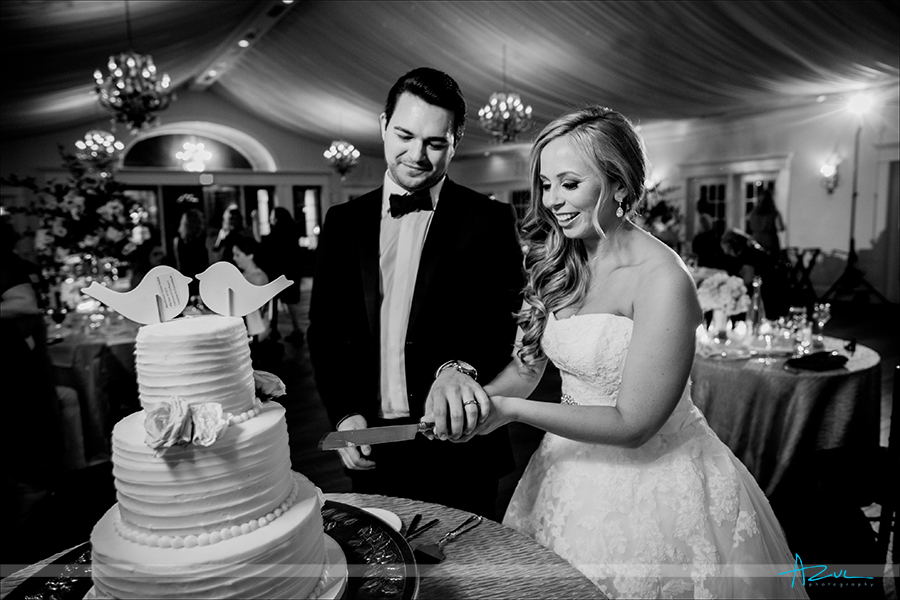"""All wedding photographers get the """"cutting the cake' image and this wedding at Highgrove Estate in NC was a must."""