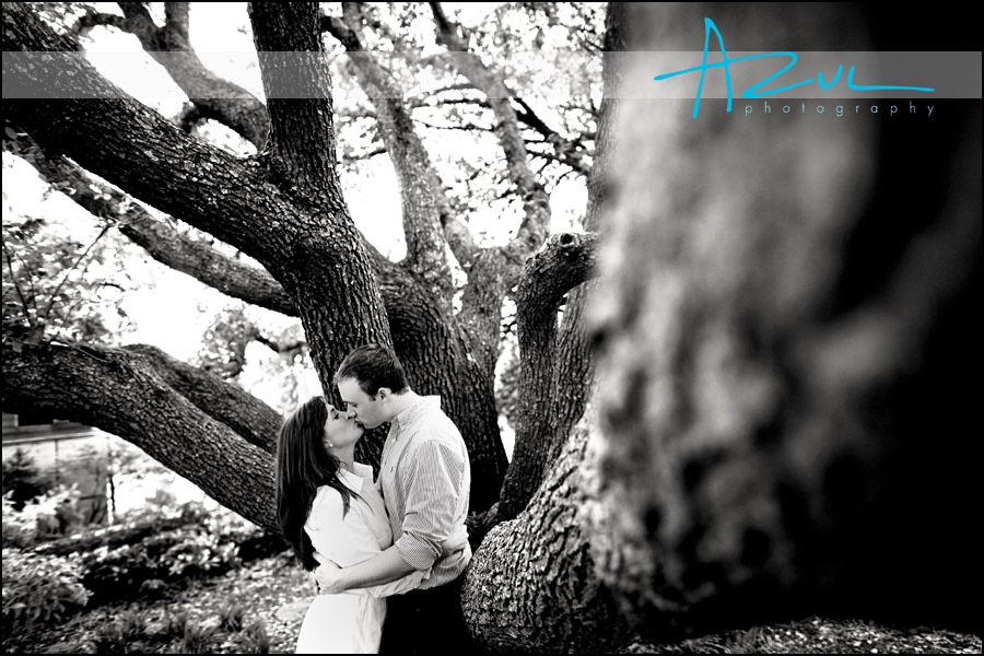 Couple kiss during engagement session.