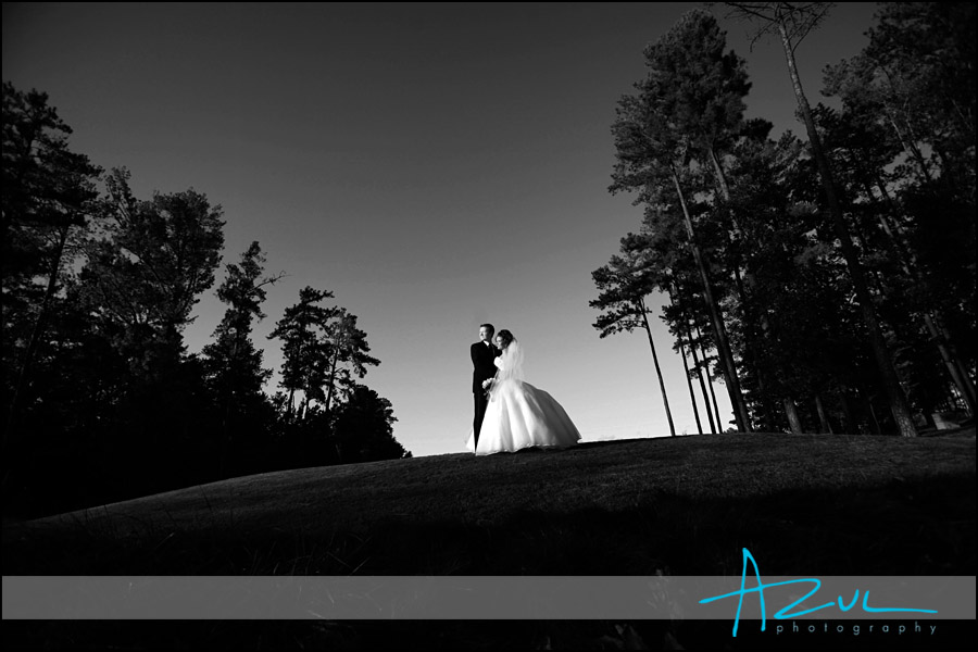 Portrait of the wedding couple before the reception in North Raleigh
