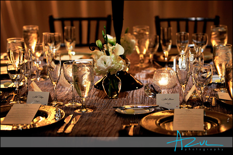 Classic party rentals Raleigh supplied the chargers and glassware