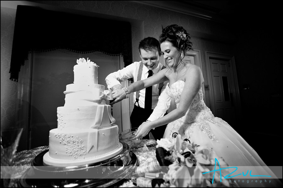 Raleigh wedding cake created by Sweet Memories