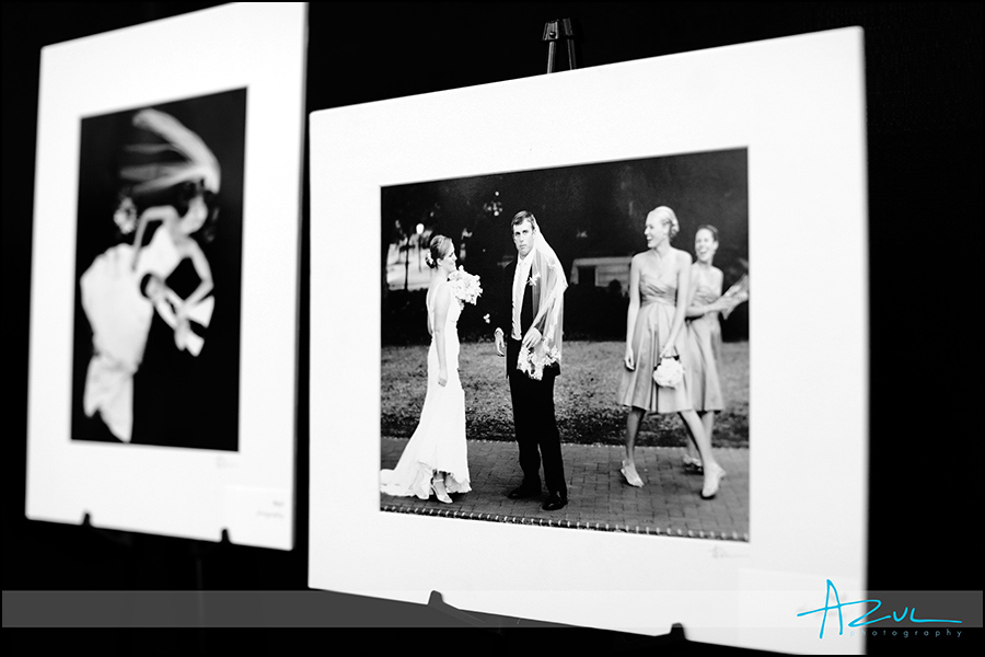 Raleigh wedding photography show art