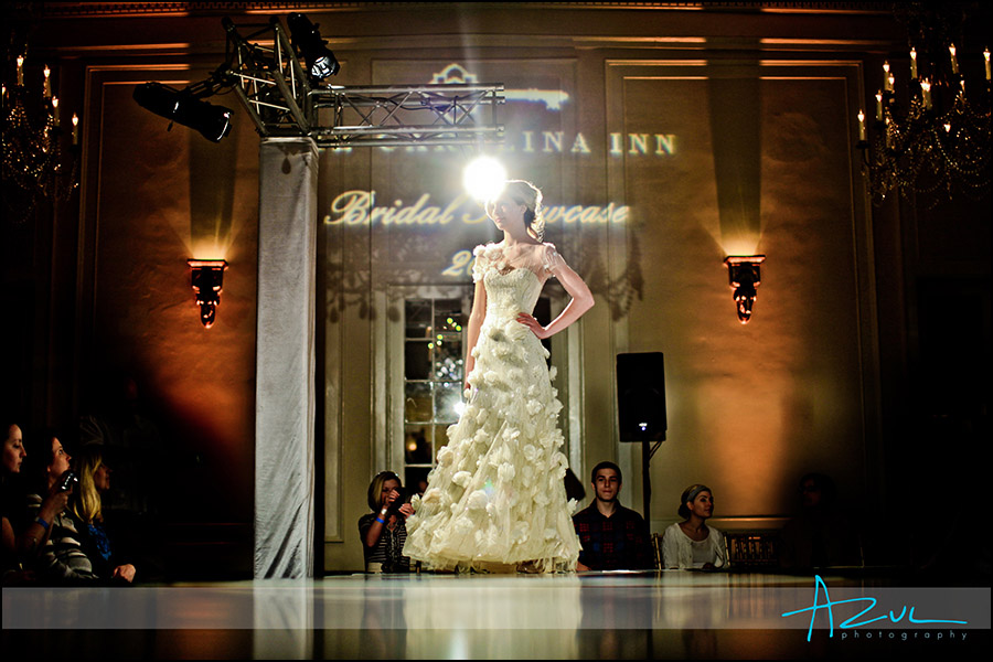 Cream Wedding dresses Ralaigh NC