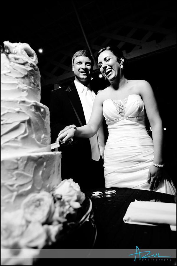 Raleigh wedding reception cake and venue