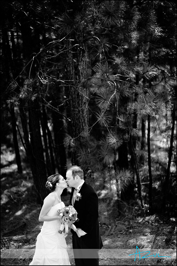 Raleigh wedding day portrait creative photographer NC