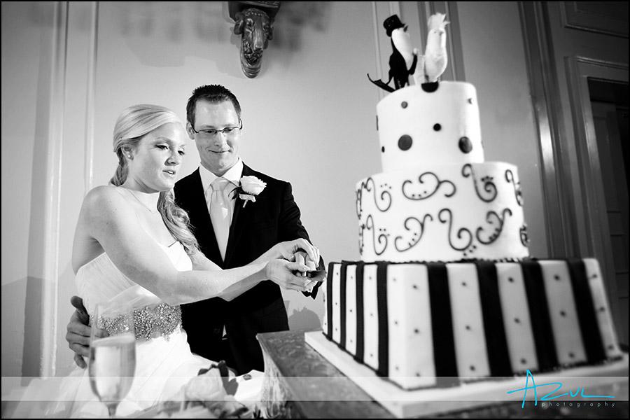 Raleigh wedding cake NC photograph