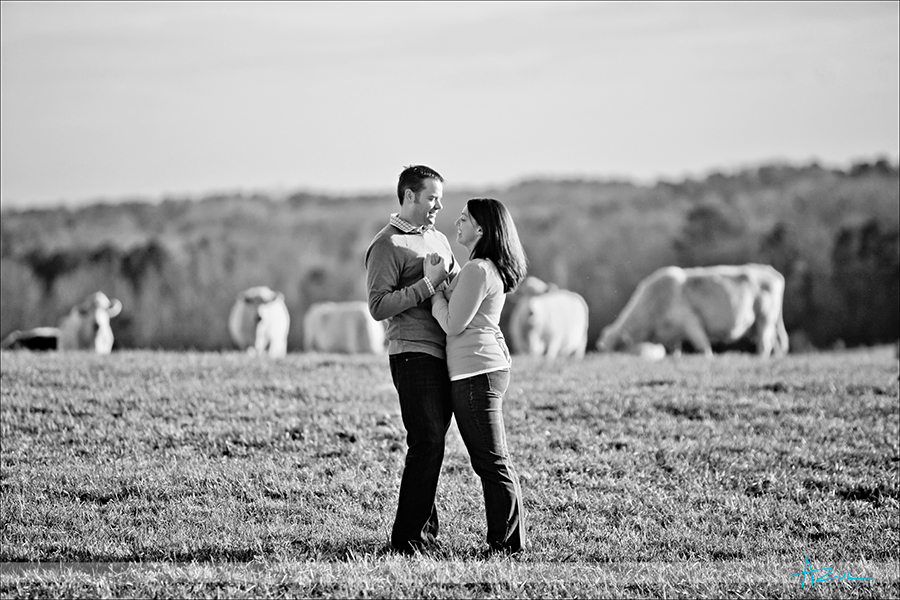 Different engagement portrait photographer of B&Gl NC
