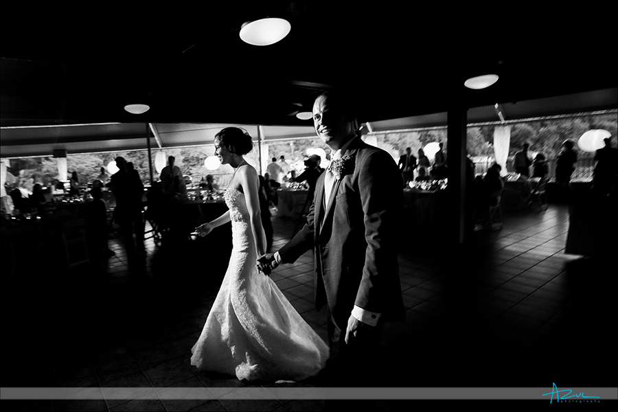 Great wedding day reception lighting photographer in North Carolina