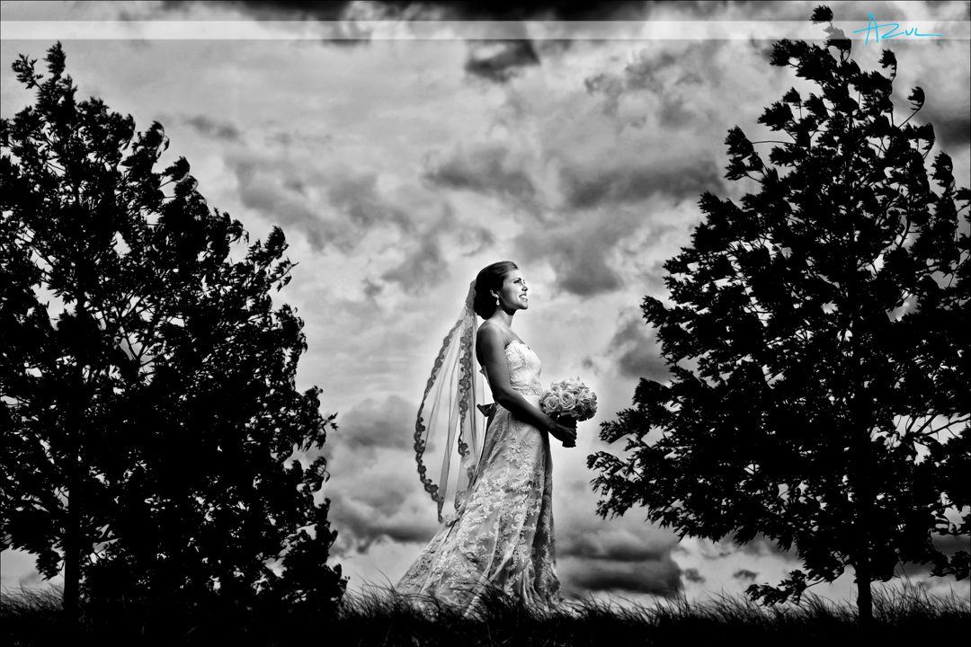 Unique wedding bridal portrait photography Raleigh NC
