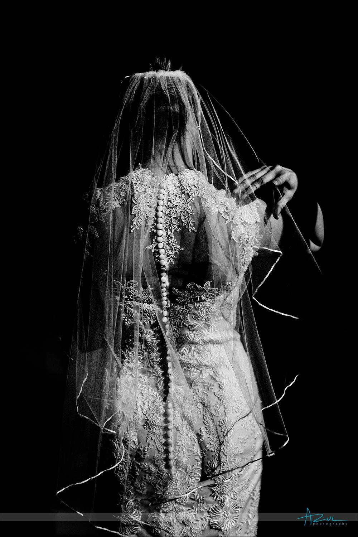 Best veil wedding day bridal portrait Raleigh, NC