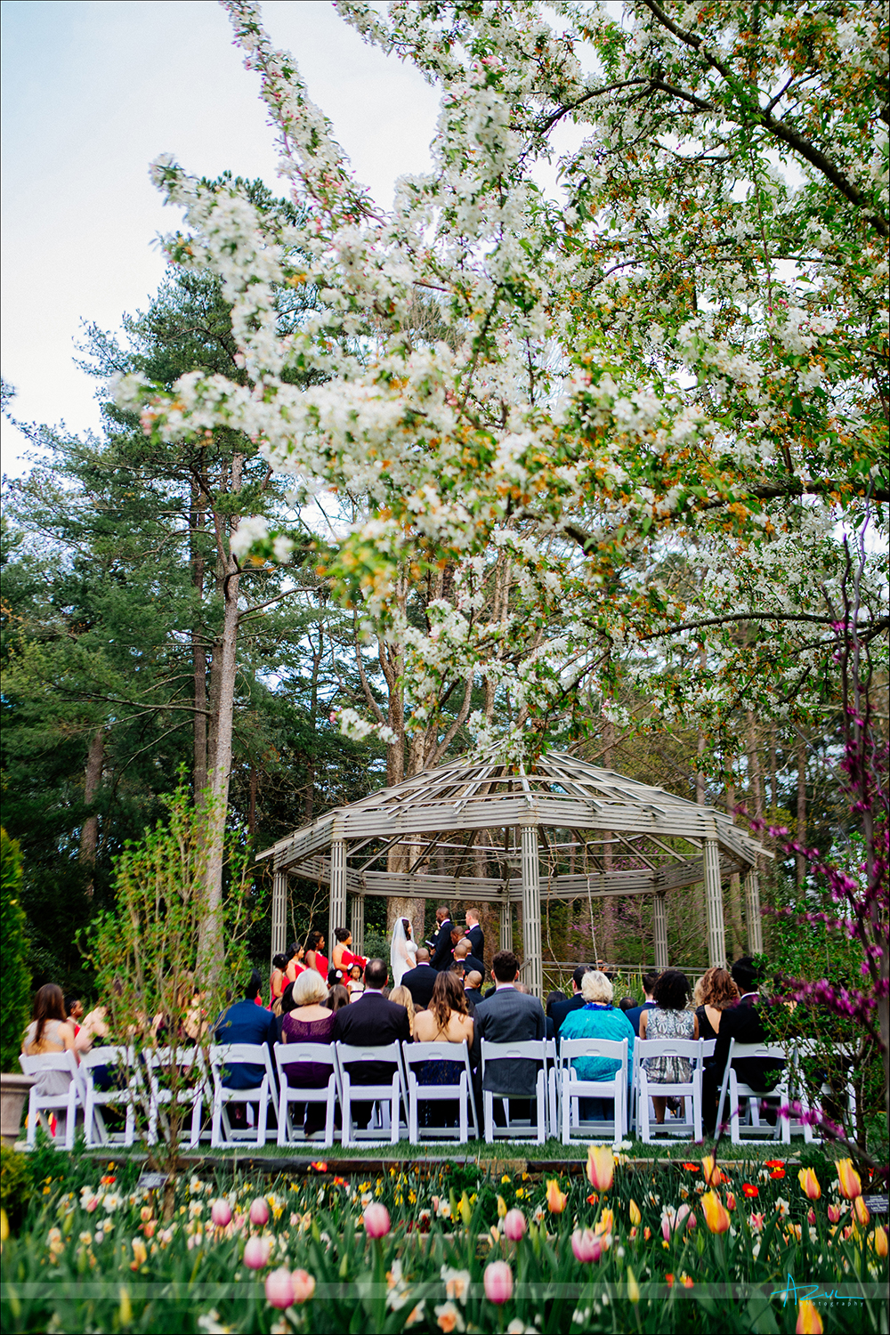 Beautiful wedding day flowers created by nature at Duke Gardens