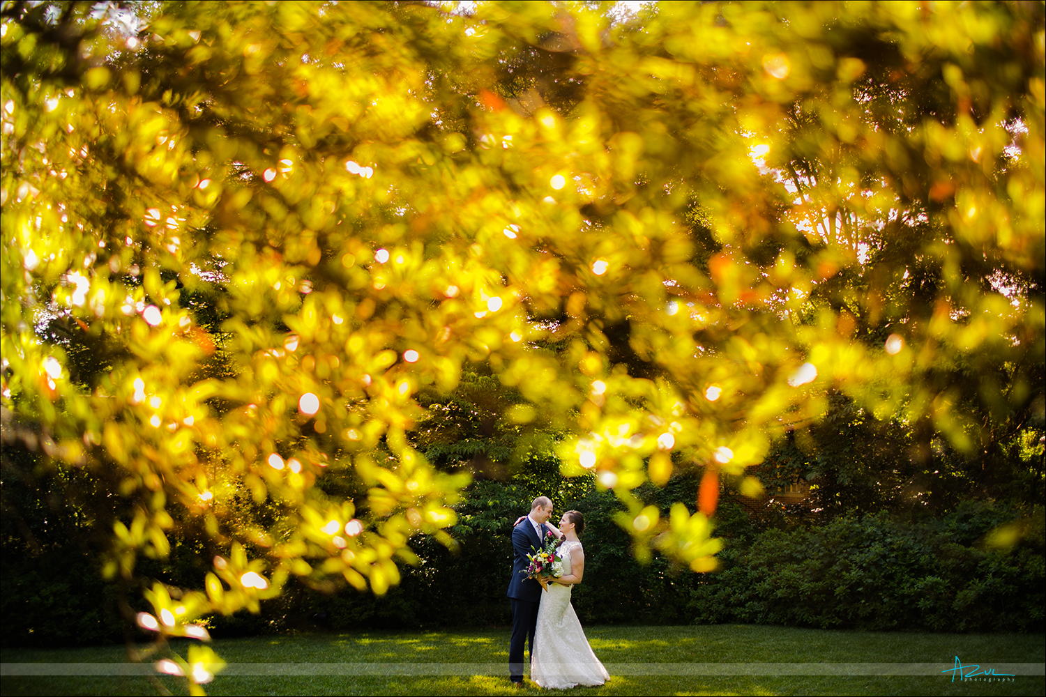 Wedding day bride and groom creative and unique photographer shoots through backlit leaves in Raleigh NC